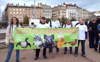 Manifestation – STOP aux tirs sur les loups !
